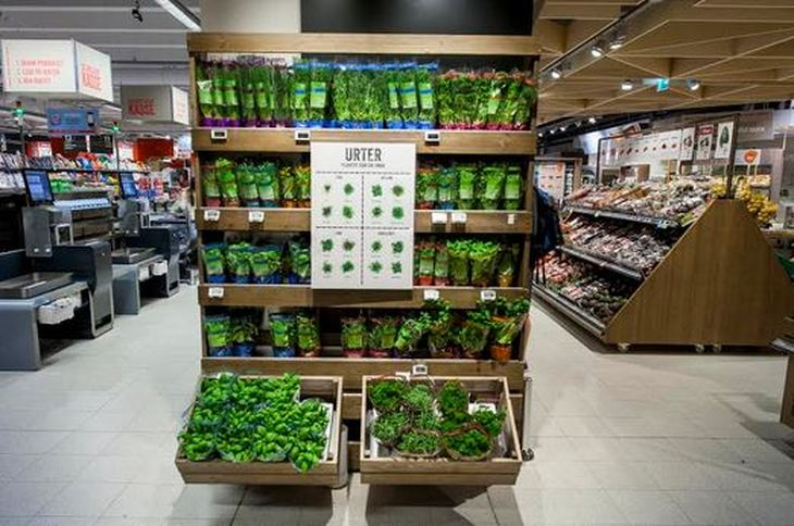 Innovative Classroom Displays ~ Jonathan raduns food merchandising ideas examples